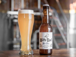 Article articleimage 309