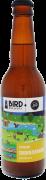 Bird zuiderzeearend