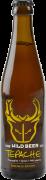 Wild beer tepache