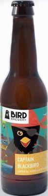 Bird captain blackbird