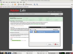 Adobe Flash Download