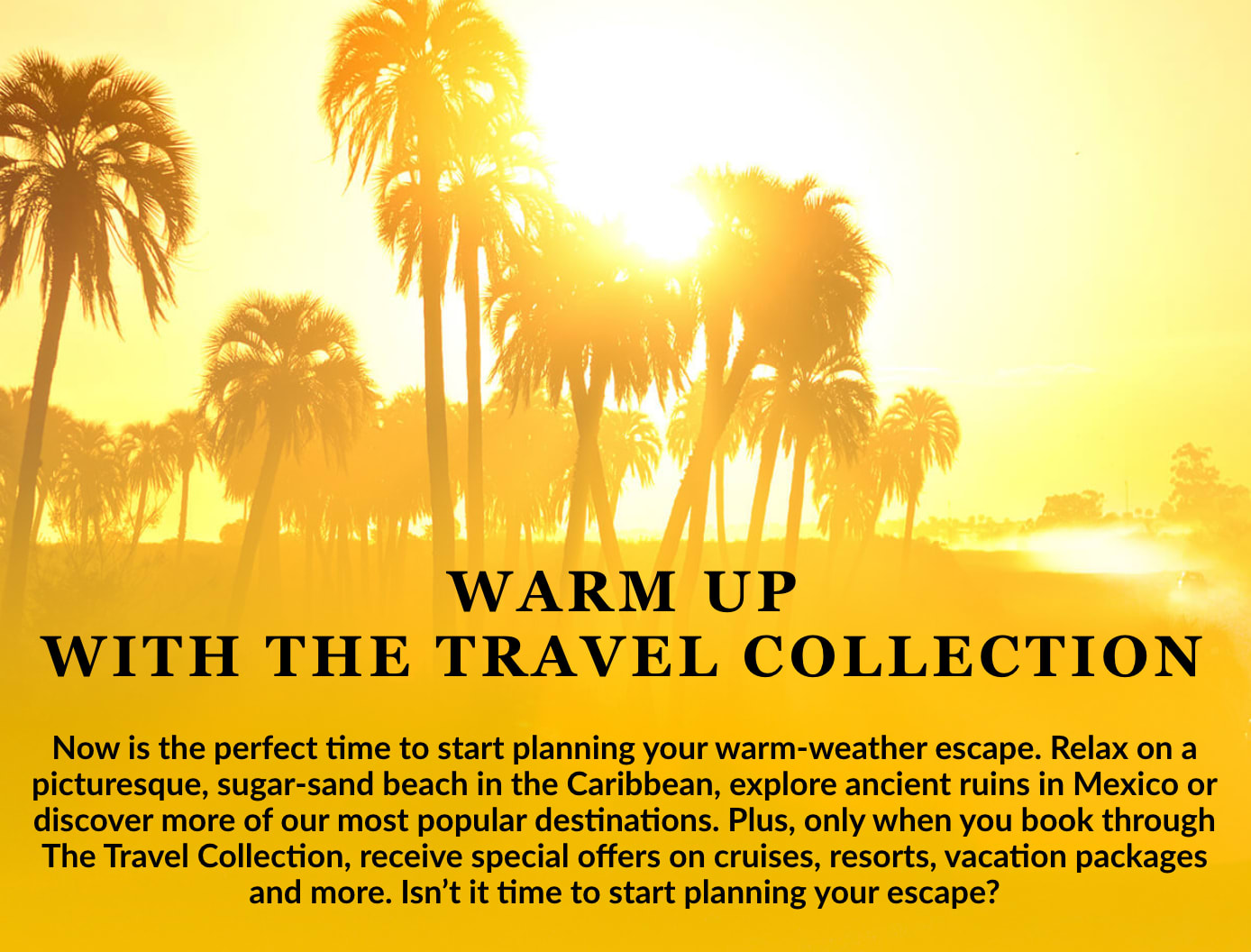 The Travel Collection Email