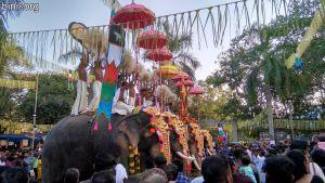 Olarikkara Sree Bhagavathi Temple Vela on 3rd Jan 2020