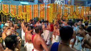 Thiruvambadi Sri Krishna Temple Vela - Chirakkal Desapattu on 8th Jan 2020