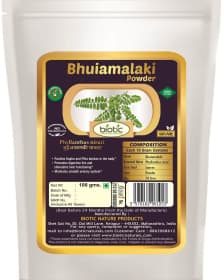 Bhuiamalaki Powder / Bhumi Amla Powder - Ayurvedic Powder for Kidney problems and for Kidney stone and for Urinary disorder oliguria