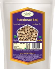 Putrajeevak Seed/Beej - Herbs for female infertility and improve reproductive system and for uterus and ovaries