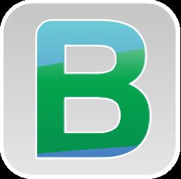 BitaBiZ logo