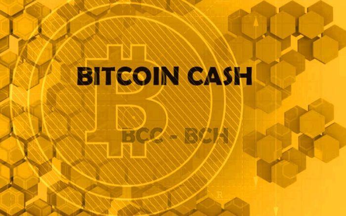 Торги Bitcoin Cash остановлены после добавления на Coinbase и необычного роста цены