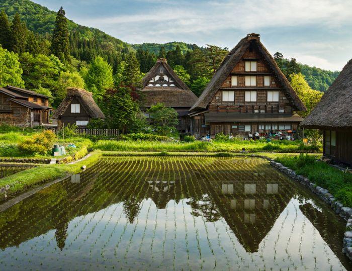 В Японии жители сельского поселения намерены запустить выпуск собственных криптотокенов