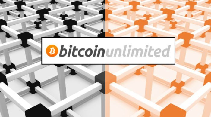 80% нод Bitcoin Unlimited могли принадлежать одному владельцу