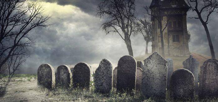 Исследование показывает, что более половины ICO умирают в первые четыре месяца
