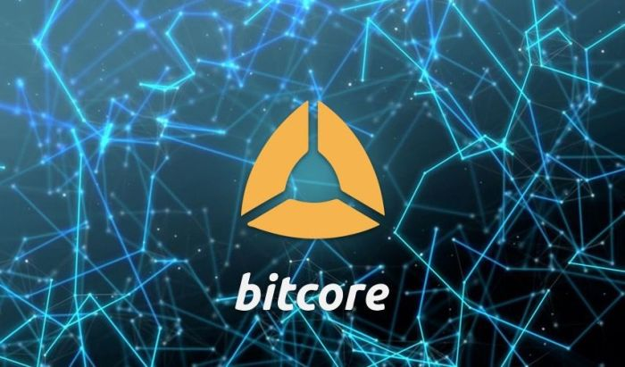 Полный узел Биткойна Bitcore 5.0 от Bitpay теперь поддерживает абсолютно любой тип Биткойнов