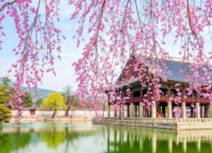 ICO запрещено в Южной Корее