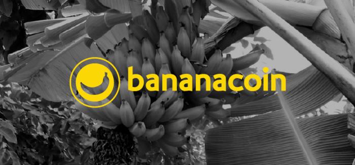 Инвесторы проекта Bananacoin увидели своими глазами банановые плантации в Лаосе