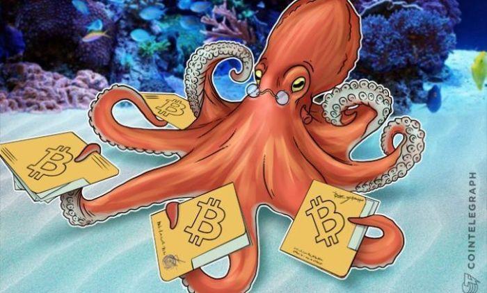 Kraken о Bitcoin Cash: готовьтесь к «экстремальной волатильности»