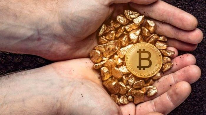 Биткоин и два его форка: пятерка крупнейших криптовалют изменила свой состав