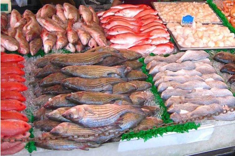 Empresa à venda em Juiz de Fora/MG - Distribuidora de Pescados e Frutos do Mar