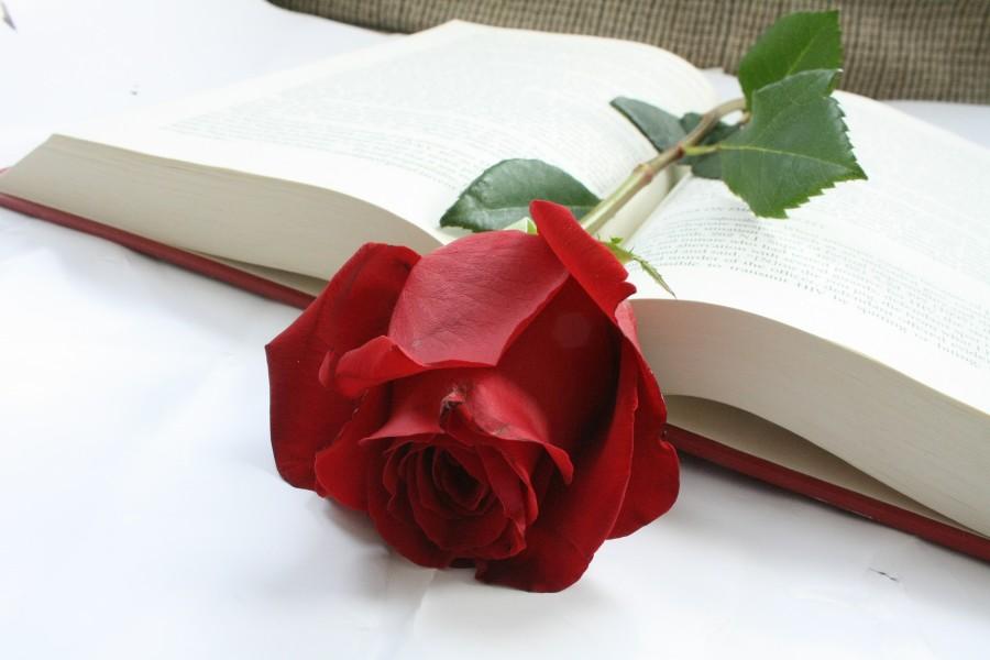 novedades literarias libros para Sant Jordi