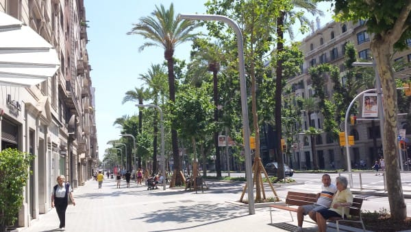 palm trees and benches in the Diagonal