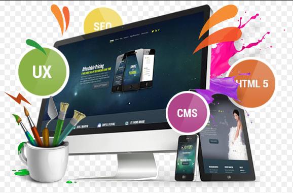 How To Make Money With Website Design Skills Using Wordpress Bizmarrow Technologies