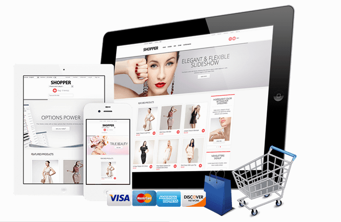 Ecommerce website in Abuja Nigeria