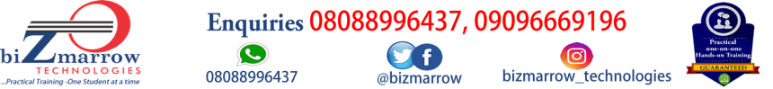 BIZMARROW TECHNOLOGIES ABUJA -WEBSITE-LOGO