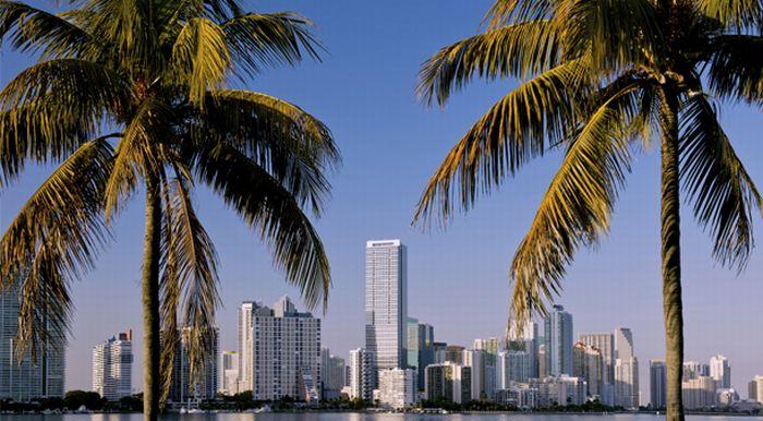 פלורידה; קרדיט: Getty Images Israel