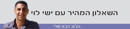 ישי לוי