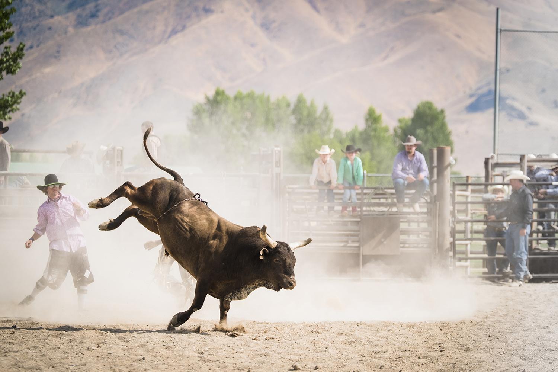 rodeo_2018.jpg