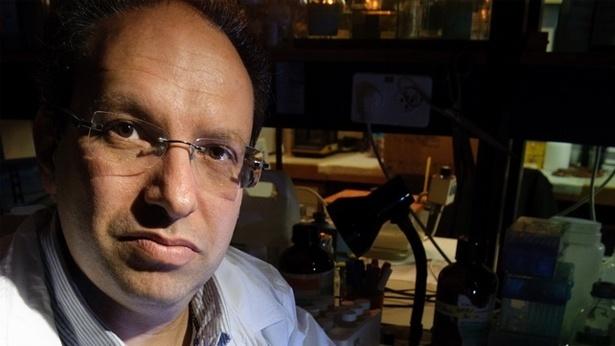 """ד""""ר שי מרצקי, צילום: בונוס גרופ"""