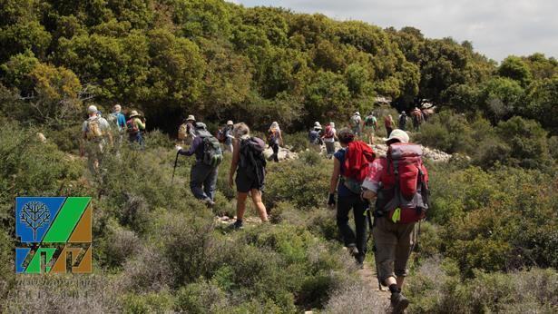 קרן קיימת לישראל (Getty images Israel), צילום: Getty images Israel