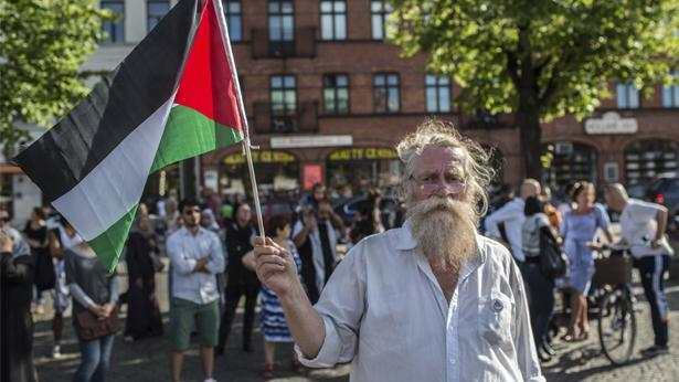 מפגין פרו פלסטיני, צילום: Getty images Israel