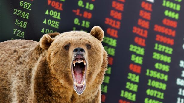 הדובים באים, צילום: Getty images Israel