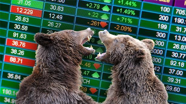 הדובים שולטים בשוק, צילום: Getty images Israel