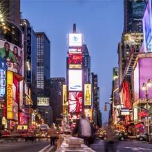 בהלה בניו יורק