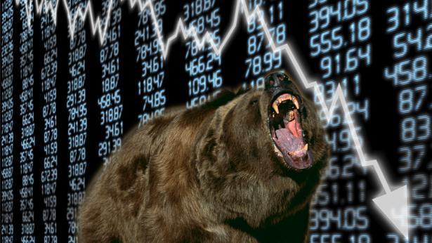 דובים בשווקים, צילום: Getty images Israel