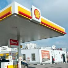 נזקי הנפט