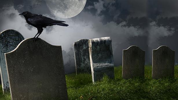 בית קברות, צילום: Getty Images Israel