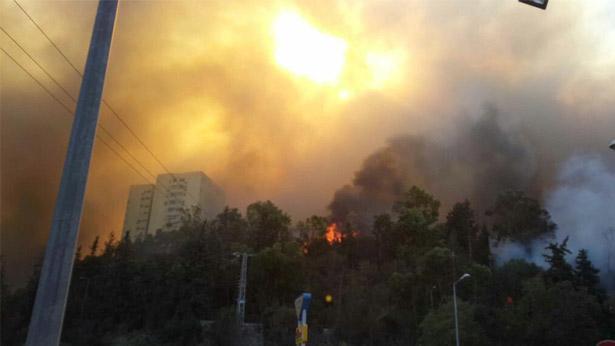 השריפה בחיפה, צילום: כבאות והצלה מחוז חוף