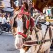 איפה יותר בטוח לנהוג – בישראל או בהודו?