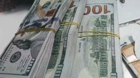 דולר, צילום: דוברות המשטרה