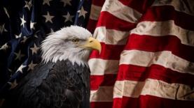 """תעסוקה ארה""""ב, צילום: iStock"""