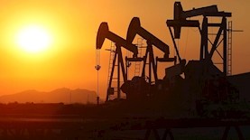 Oil, צילום: בלומברג