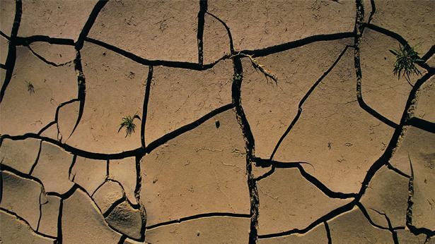 אדמה חרוכה, צילום: Getty images Israel