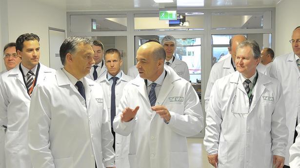 """מפעל טבע בהונגריה, צילום: יח""""צ טבע"""
