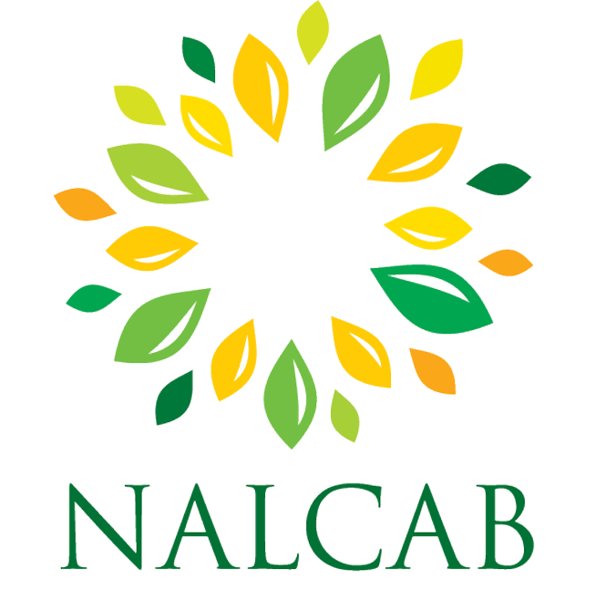 Image result for nalcab