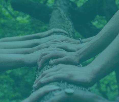 Industry Collaboration in Bioplastics