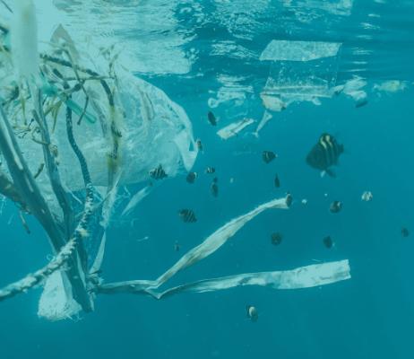 Putting Marine Plastics to Work in the Supply Chain
