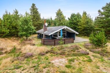 Ferienhaus 309 - Dänemark