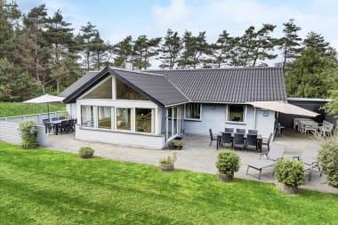 Ferienhaus 119 - Dänemark